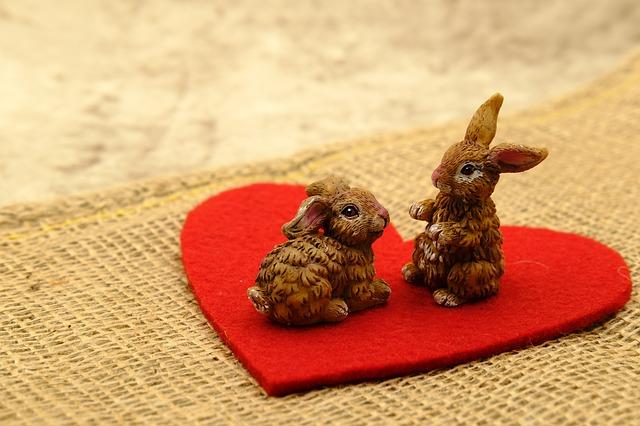 Два кролика на сердце